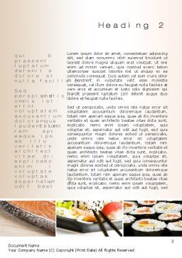 Sushi Collage Word Template, Second Inner Page, 10675, Food & Beverage — PoweredTemplate.com