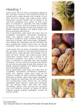 Nuts Collage Word Template, First Inner Page, 10898, Food & Beverage — PoweredTemplate.com