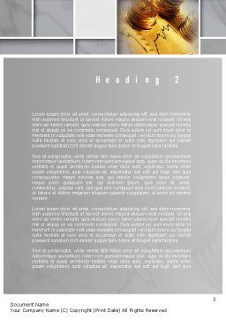 Accounting Services Word Template Second Inner Page