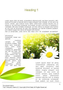 Ox-eye Daisy Camomile Word Template, First Inner Page, 11157, Nature & Environment — PoweredTemplate.com