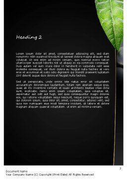 Craniosacral Therapy Word Template, Second Inner Page, 11206, Medical — PoweredTemplate.com