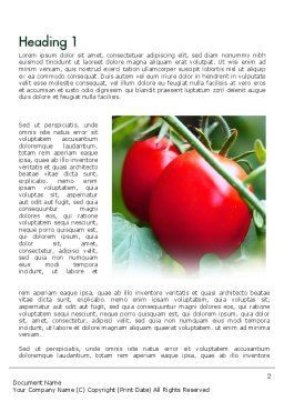 Ripe Tomatoes Word Template First Inner Page