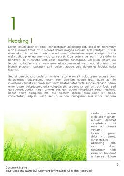 Grass On The Sunshine Rays Word Template, First Inner Page, 13817, Nature & Environment — PoweredTemplate.com