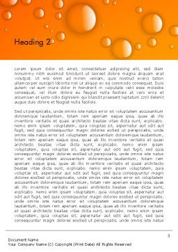 Orange Water Bubbles Word Template, Second Inner Page, 13847, Food & Beverage — PoweredTemplate.com