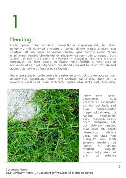 Grass and Concrete Word Template, First Inner Page, 13868, Nature & Environment — PoweredTemplate.com