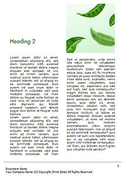 Green Tea Leaves Word Template, Second Inner Page, 15273, 3D — PoweredTemplate.com
