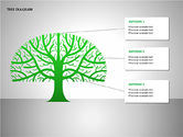 Tree Diagrams: Tree Diagrams #00084