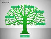Tree Diagrams#12