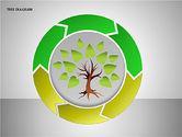 Tree Diagrams#13