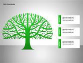 Tree Diagrams#14
