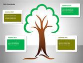 Tree Diagrams#15