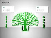 Tree Diagrams#4