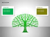 Tree Diagrams#5