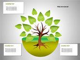 Tree Diagrams#8