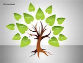 Tree Diagrams#9