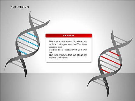 DNA Strand Diagrams, Slide 10, 00113, Shapes — PoweredTemplate.com