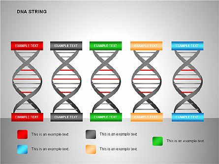 DNA Strand Diagrams, Slide 12, 00113, Shapes — PoweredTemplate.com