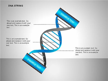 DNA Strand Diagrams, Slide 13, 00113, Shapes — PoweredTemplate.com