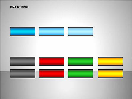 DNA Strand Diagrams, Slide 14, 00113, Shapes — PoweredTemplate.com
