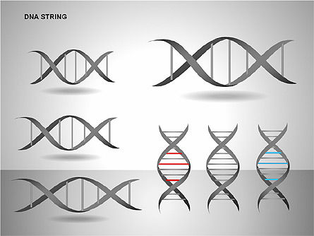 DNA Strand Diagrams, Slide 15, 00113, Shapes — PoweredTemplate.com