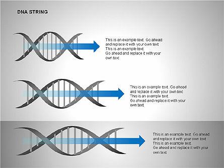 DNA Strand Diagrams, Slide 5, 00113, Shapes — PoweredTemplate.com