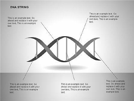 DNA Strand Diagrams, Slide 6, 00113, Shapes — PoweredTemplate.com