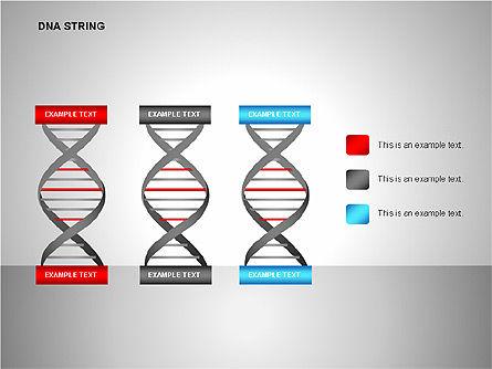 DNA Strand Diagrams, Slide 8, 00113, Shapes — PoweredTemplate.com