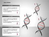 DNA Strand Diagrams#4