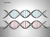 DNA Strand Diagrams#7
