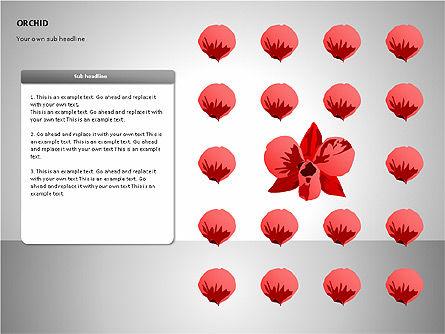 Orchids Shapes, Slide 10, 00117, Stage Diagrams — PoweredTemplate.com