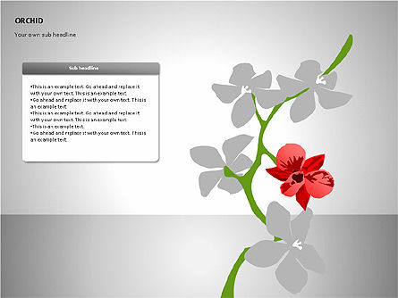 Orchids Shapes, Slide 2, 00117, Stage Diagrams — PoweredTemplate.com