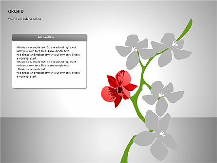 Orchids Shapes, Slide 3, 00117, Stage Diagrams — PoweredTemplate.com