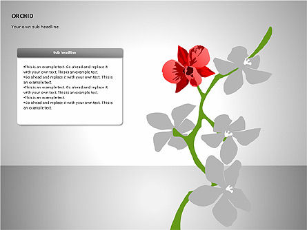Orchids Shapes, Slide 4, 00117, Stage Diagrams — PoweredTemplate.com