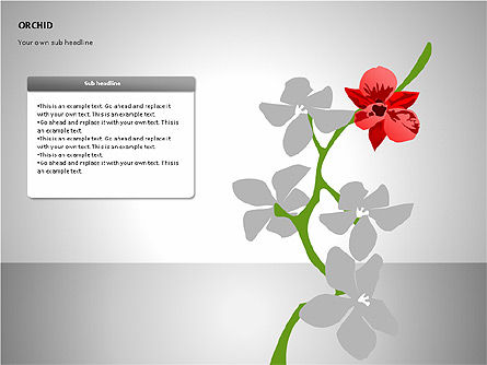 Orchids Shapes, Slide 5, 00117, Stage Diagrams — PoweredTemplate.com