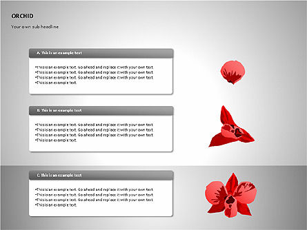 Orchids Shapes, Slide 7, 00117, Stage Diagrams — PoweredTemplate.com