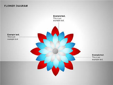 Flower Stages Diagram, Slide 10, 00128, Stage Diagrams — PoweredTemplate.com