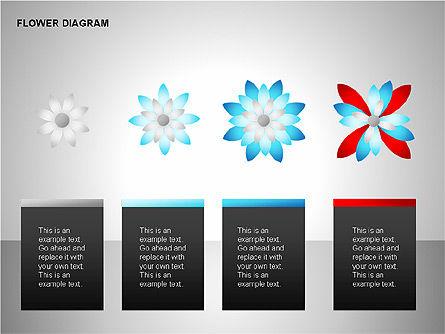 Flower Stages Diagram, Slide 11, 00128, Stage Diagrams — PoweredTemplate.com