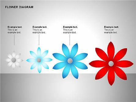 Flower Stages Diagram, Slide 12, 00128, Stage Diagrams — PoweredTemplate.com