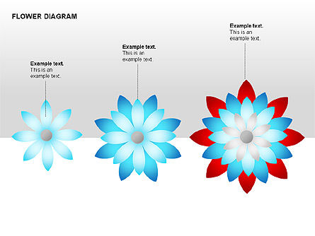 Flower Stages Diagram, Slide 2, 00128, Stage Diagrams — PoweredTemplate.com