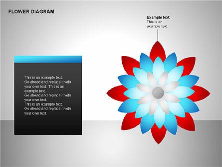 Flower Stages Diagram, Slide 8, 00128, Stage Diagrams — PoweredTemplate.com