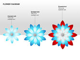 Flower Stages Diagram#2