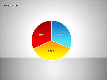 Pie Charts: Life Cycle Diagram #00157