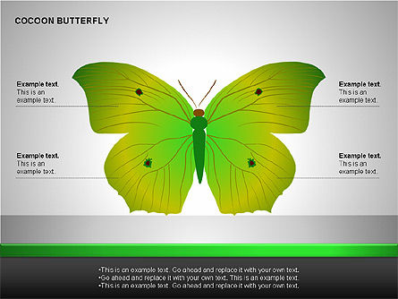 Cocoon Butterfly Diagram , Slide 10, 00177, Stage Diagrams — PoweredTemplate.com
