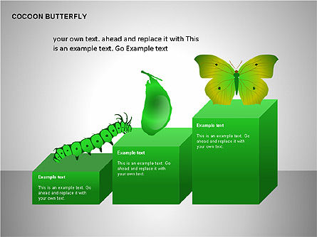 Cocoon Butterfly Diagram , Slide 11, 00177, Stage Diagrams — PoweredTemplate.com