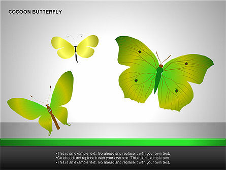 Cocoon Butterfly Diagram , Slide 12, 00177, Stage Diagrams — PoweredTemplate.com