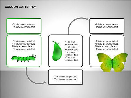 Cocoon Butterfly Diagram , Slide 14, 00177, Stage Diagrams — PoweredTemplate.com