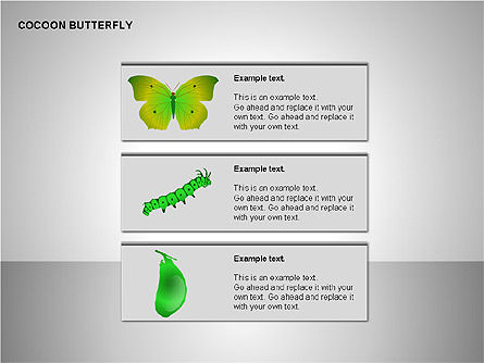 Cocoon Butterfly Diagram , Slide 15, 00177, Stage Diagrams — PoweredTemplate.com