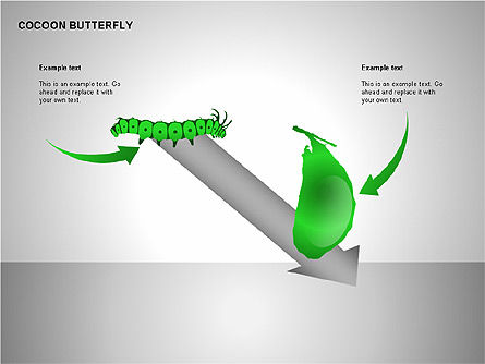 Cocoon Butterfly Diagram , Slide 2, 00177, Stage Diagrams — PoweredTemplate.com