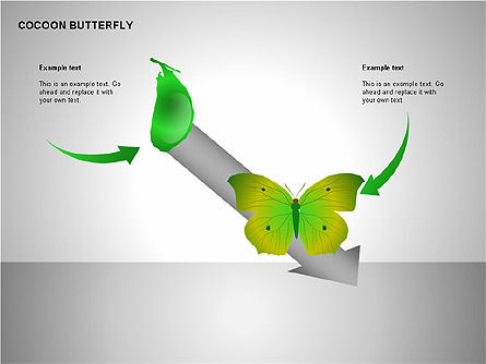 Cocoon Butterfly Diagram , Slide 3, 00177, Stage Diagrams — PoweredTemplate.com