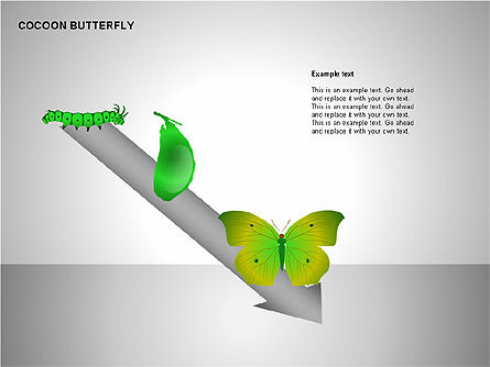 Cocoon Butterfly Diagram , Slide 4, 00177, Stage Diagrams — PoweredTemplate.com